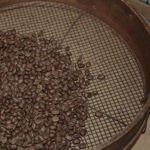 コーヒー豆の選別